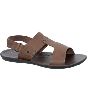 ITA 10217 brown I-23